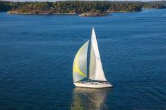 Острова, вода и дома Яхта и волны Солнечный день много деревьев стоковое изображение rf