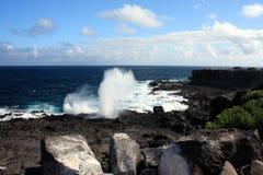 Острова Галапагос Стоковая Фотография