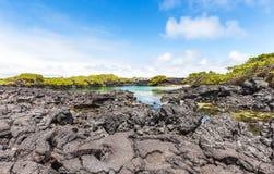 Острова Галапагос Стоковое фото RF