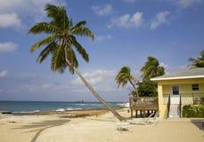 острова Кеймана грандиозные Стоковая Фотография RF