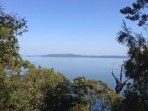 Острова через деревья Стоковое Фото