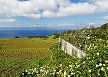 Остров Азорских островов - взгляд Pico стоковые фотографии rf