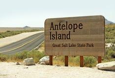 Остров антилопы Стоковое Фото