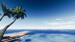 Остров ладони Стоковое фото RF