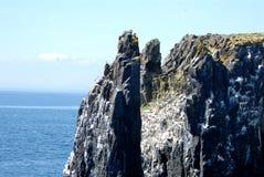 Остров береговой линии в мае Стоковые Фото