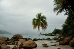 Остров Бразилии стоковое изображение