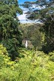 остров Гавайских островов падений akaka большой Стоковые Изображения RF