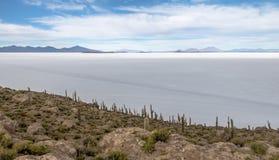 Остров кактуса Incahuasi в соли Салара de Uyuni плоском - отдел Potosi, Боливия стоковые фотографии rf