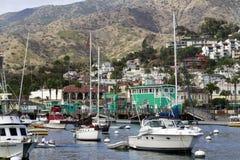 Остров Калифорния Каталины гавани Стоковое Изображение RF