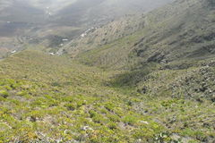 Остров Лансароте в Канарских островах стоковая фотография rf