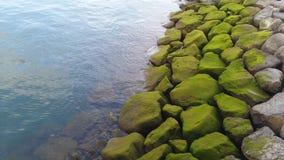 Остров Мадейры Стоковые Фото