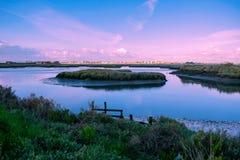 Остров на реке стоковая фотография