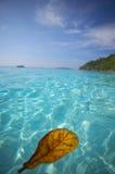 остров пляжа тропический Стоковая Фотография
