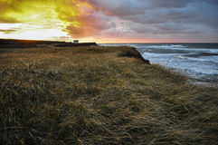 Остров Принца Эдуарда Стоковая Фотография