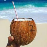 Остров рая, Багамские острова стоковое изображение rf