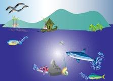 Остров рая Стоковое Изображение RF