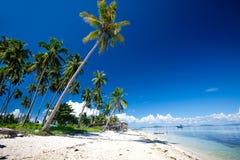 остров рощ кокоса тропический Стоковые Изображения