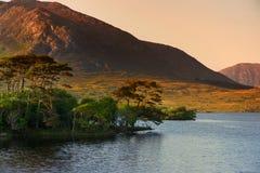 Остров 12 сосен, стоя на шикарной предпосылке сформированной острыми пиками горной цепи вызвал 12 Bens, графство Ga Стоковые Изображения