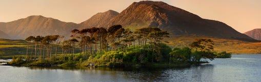 Остров 12 сосен, стоя на шикарной предпосылке сформированной острыми пиками горной цепи вызвал 12 Bens, графство Ga Стоковые Изображения RF
