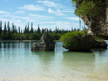 Остров 3 сосен Стоковые Изображения
