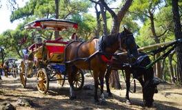 Остров Стамбул Турция принцессы лошадей экипажа Стоковая Фотография