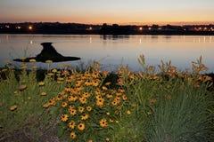 Остров стрелки на Миссисипи Стоковое фото RF