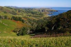 остров субтропический стоковое изображение