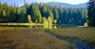 Остров с деревьями в цветах осени с предпосылкой Chopok Озеро Vrbicke в долине Demanovska в Словакии Стоковая Фотография RF