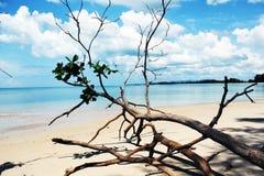 остров Таиланд Стоковая Фотография RF
