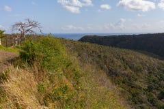 остров тропический отключение стоковая фотография rf