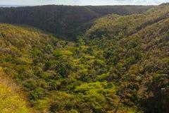 остров тропический отключение стоковое изображение rf