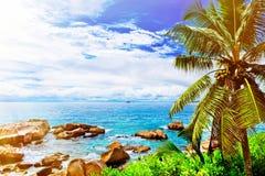 остров тропический Сейшельские островы Стоковые Фотографии RF