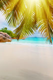 остров тропический Сейшельские островы Стоковые Изображения RF
