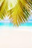остров тропический Сейшельские островы Стоковая Фотография