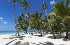 остров тропический Стоковое Изображение