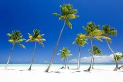 остров тропический Стоковое Изображение RF