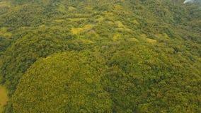 Остров Филиппины Catanduanes тропического леса вечера вида с воздуха видеоматериал