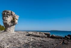 Остров цветочного горшка Стоковая Фотография RF