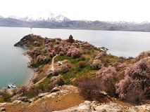 Остров Akdamar и церковь Akdamar стоковая фотография