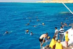 ОСТРОВ AL-MAHMYA, ЕГИПЕТ - 17-ОЕ ОКТЯБРЯ 2013: Неопознанные люди плавают в Красном Море около al-Mahmya острова, Египта стоковые фото