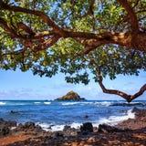 Остров Alau, Мауи, Гаваи Стоковое фото RF