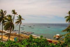 Остров Apo, Филиппины, взгляд на линии пляжа острова Пальмы, море и шлюпки Стоковая Фотография