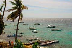 Остров Apo, Филиппины, взгляд на линии пляжа острова Пальмы, море и шлюпки Стоковые Изображения