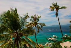 Остров Apo, Филиппины, взгляд на линии пляжа острова Пальмы, море и шлюпки Стоковая Фотография RF