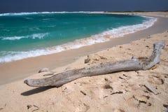 остров aruba Стоковые Фото