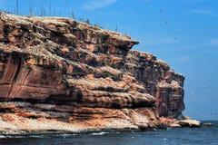 остров bonaventure Стоковая Фотография