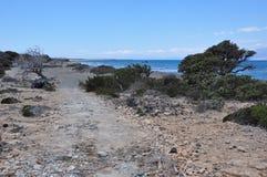 Остров Chrissi, пляж Стоковое Изображение RF