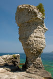 остров flowerpot стоковое фото