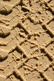 остров fraser Австралии Стоковая Фотография RF