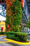 Остров Granville, Ванкувер, b C Стоковое Изображение